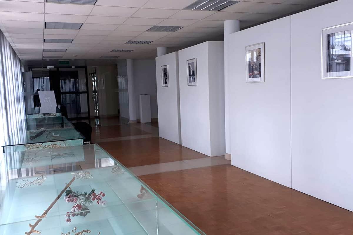 https://mostra.caerus.pt/wp-content/uploads/2021/04/Mostra-Caerus-Instituto-Politécnico-de-Beja-008.jpg